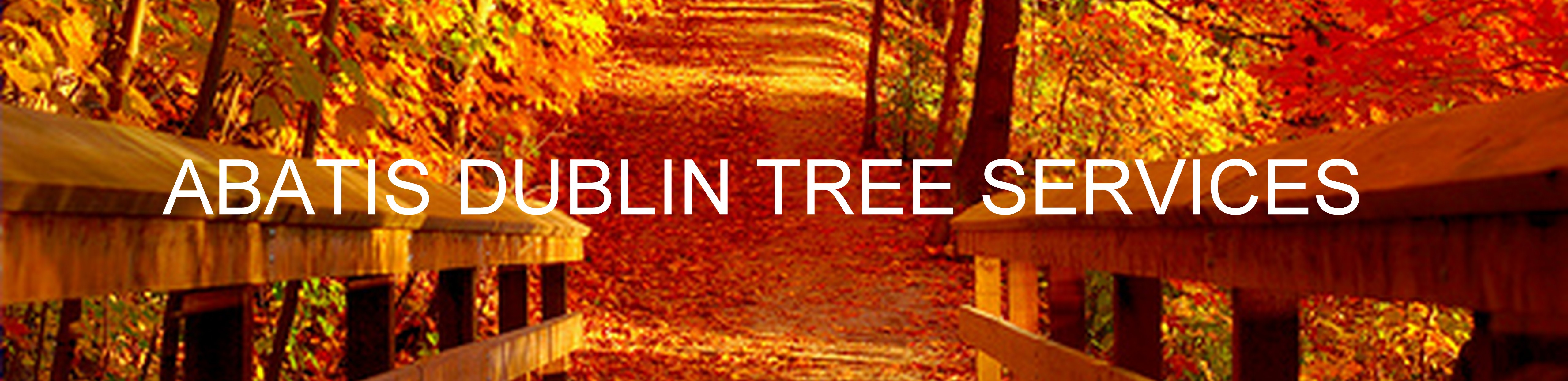 Abatis Dublin Tree Services