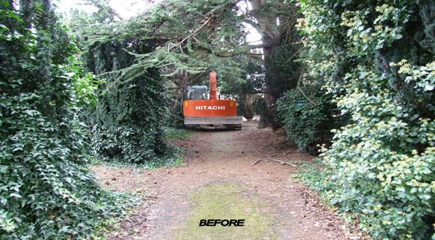 Abatis Dublin tree services heavy equipment