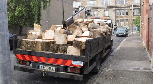 Dublin tree services | Dublin tree company | Abatis