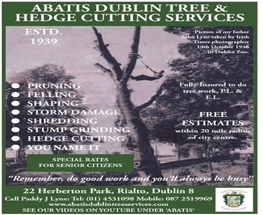 Abatis Dublin tree services Brochure